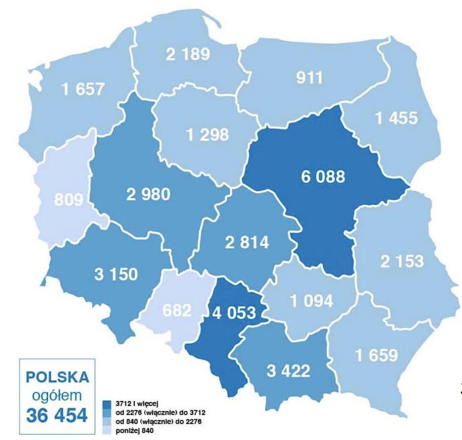 stomatologia w polsce